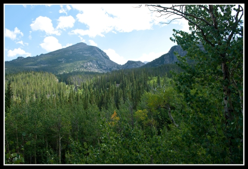 Alberta Falls Hike 2