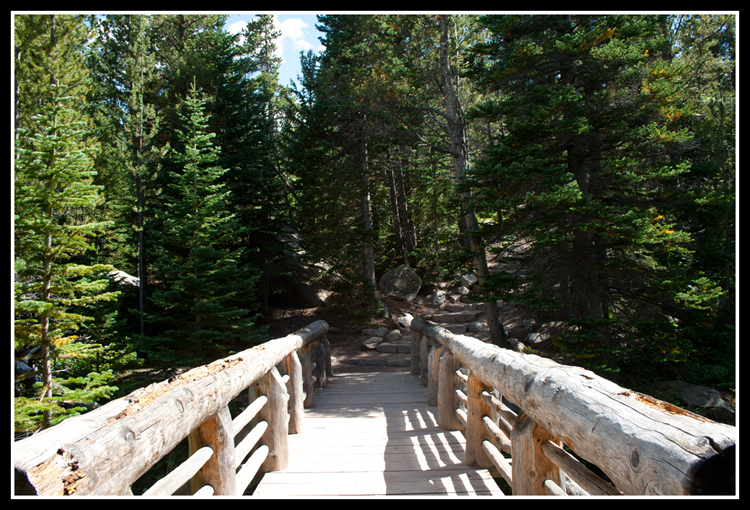Alberta Falls Hike 6