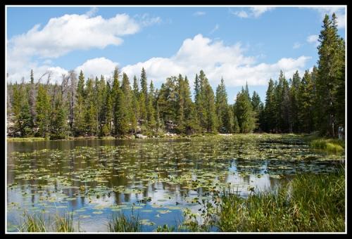 Nymph Lake 1